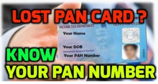 Know your PAN by Name, DOB and Number