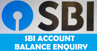 How to Check SBI Account Balance-Mini Statement Online and Offline
